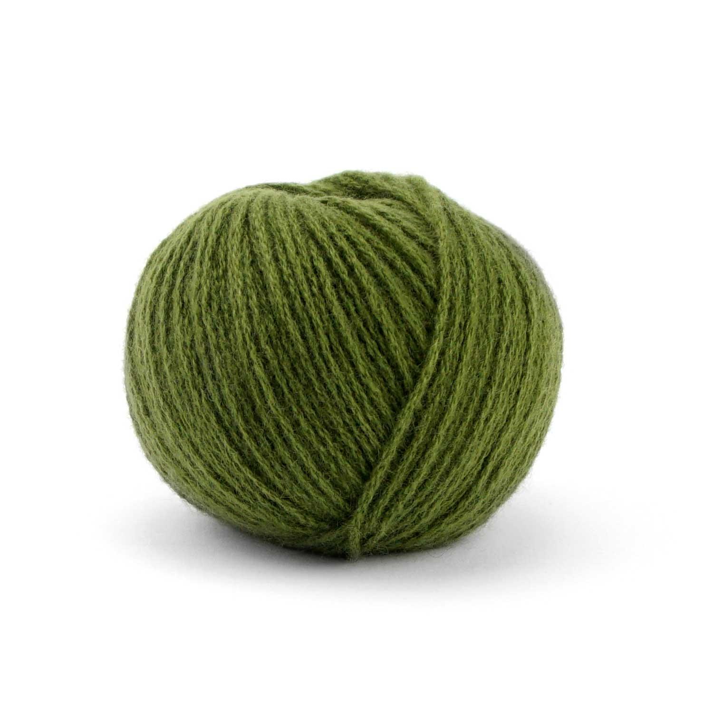 46 Alge